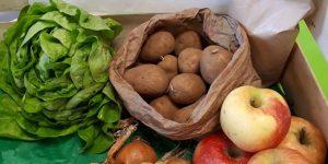 Grand panier légumes